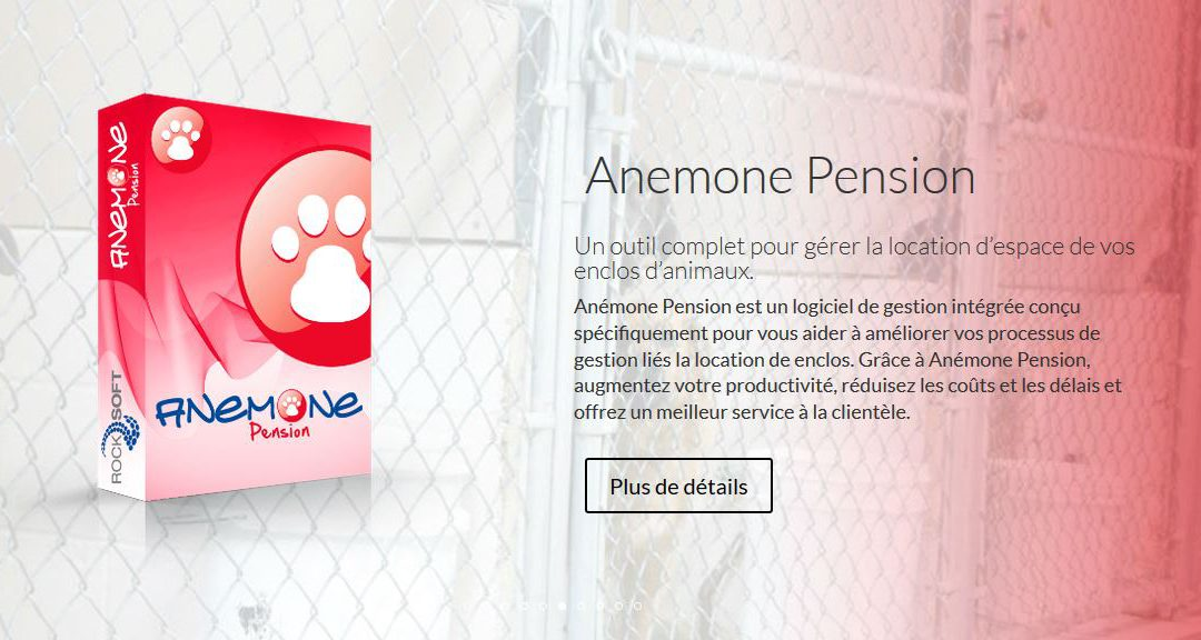 Lancement de Anemone Pension